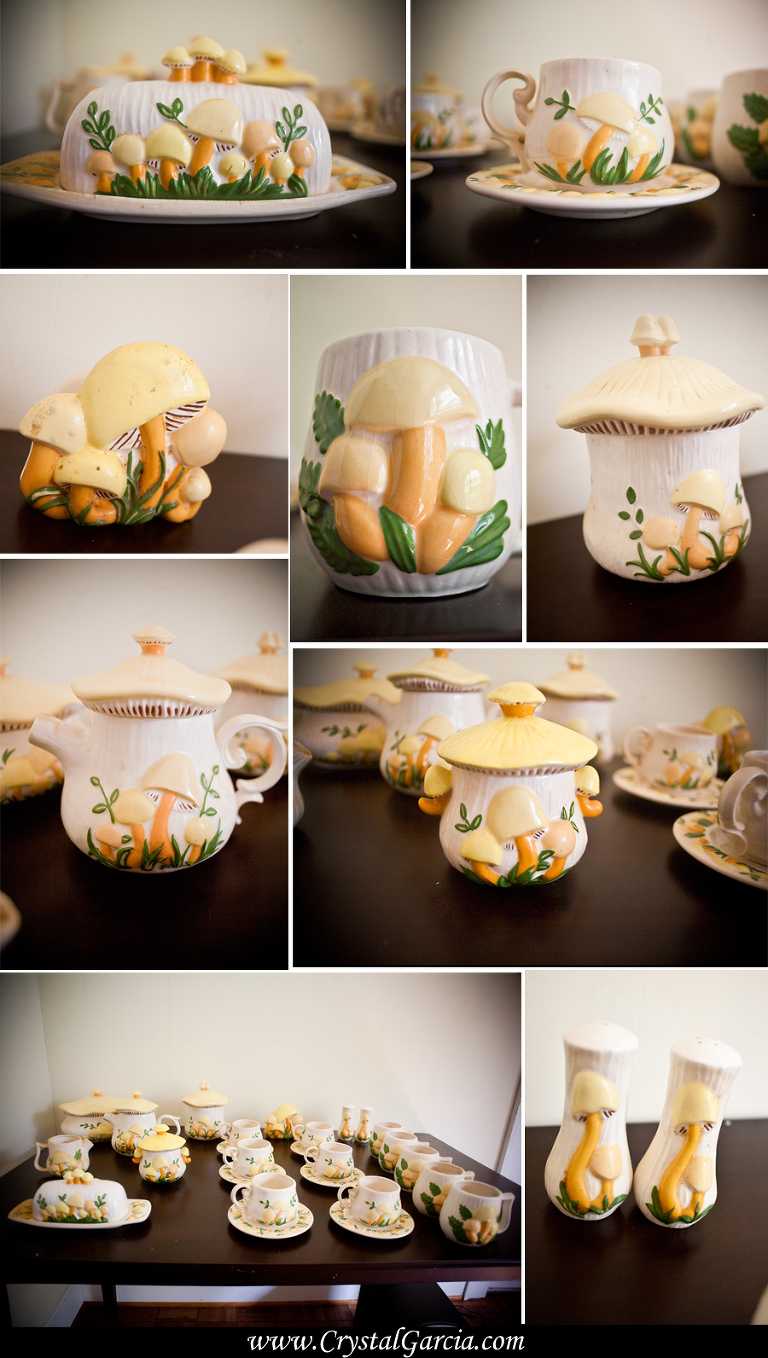 mushroomteaset